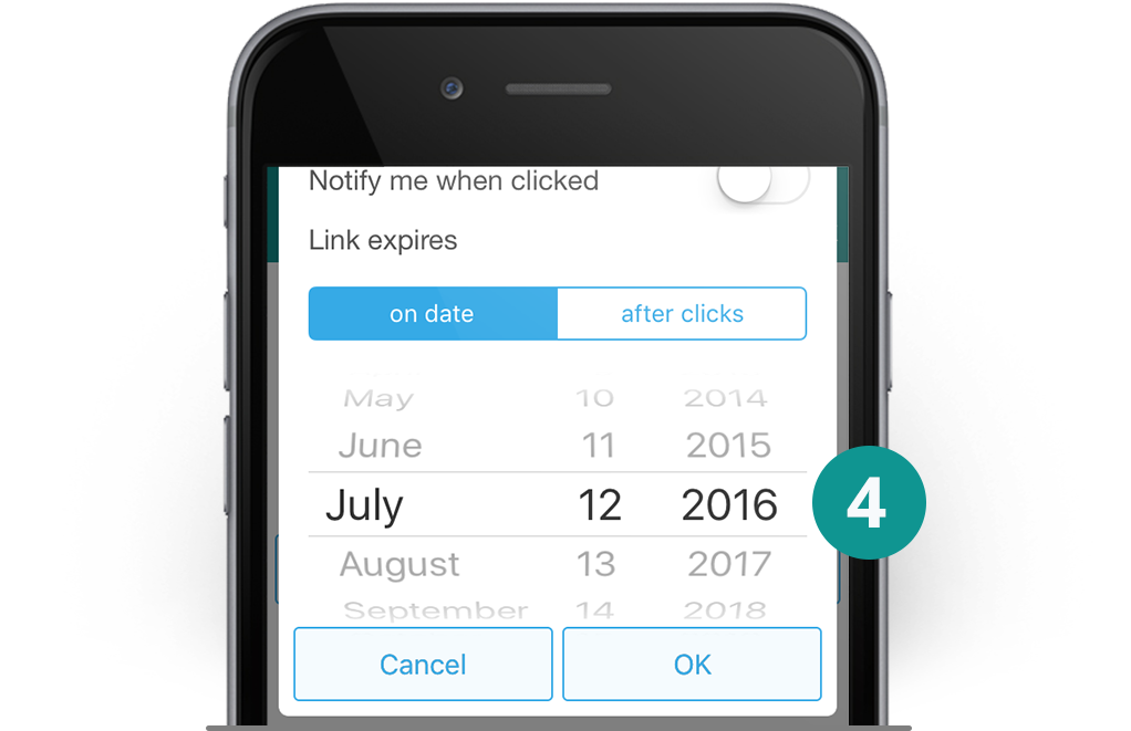 Using Link options, she can set the link to expire on a specific date or after a number of clicks